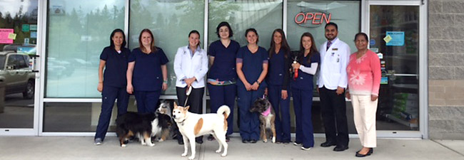 Klahanie Center Veterinary Hospital's Staff Welcomes You